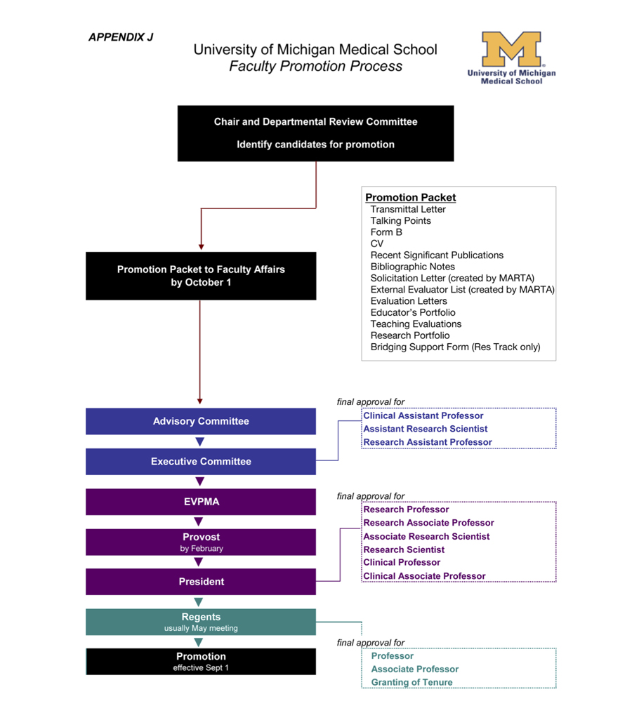 Promotion Process Timeline Graphic
